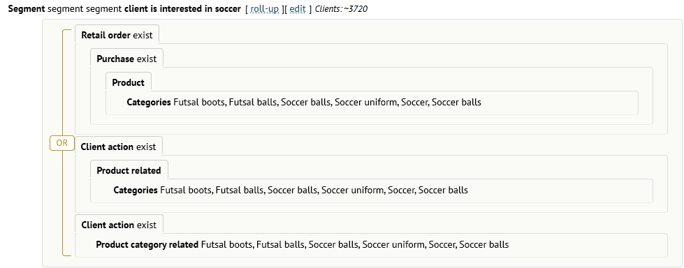 An example of a segment for a manual mailing: customers who were interested in categories of boots, futsal balls, etc. or bought them before.